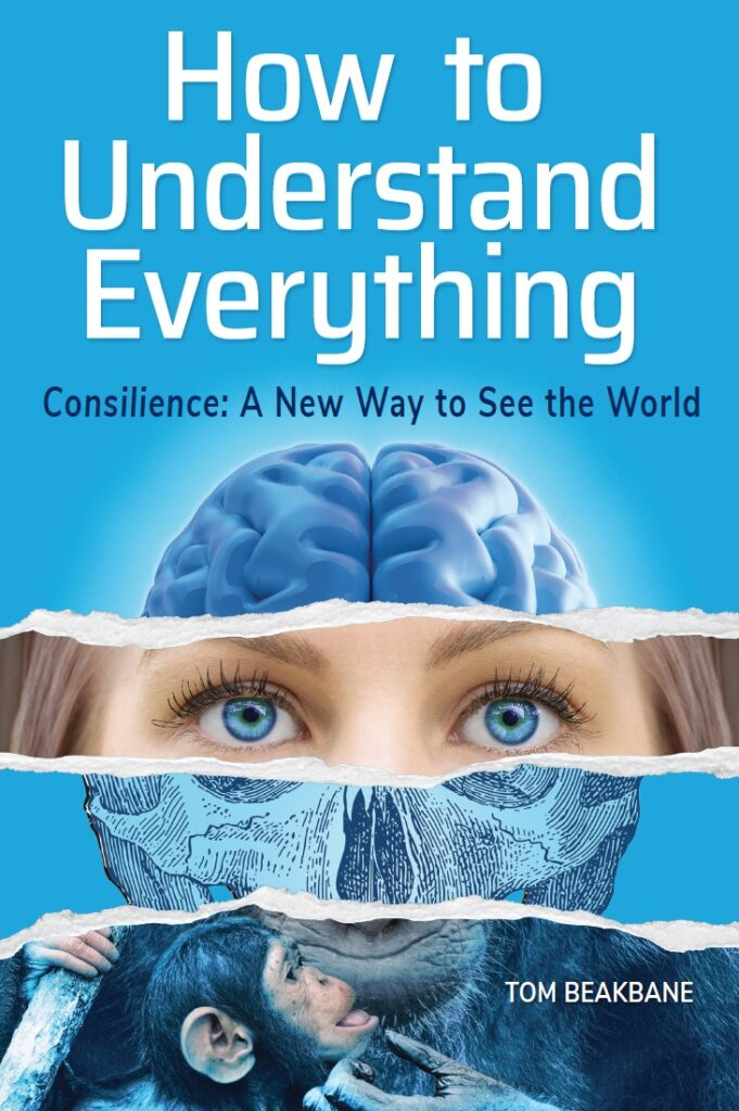 Book cover How to Understand Everything